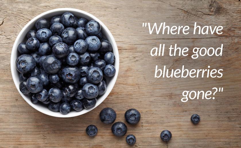 Blueberry quality control blog